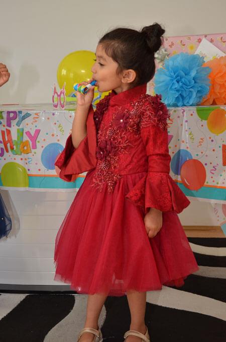 Long Sleeves Red Flower Girl Dress, Birthday Dress